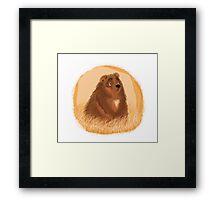 Lone Bear Framed Print