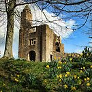 Springtime at (Old) Sherborne Castle by Amanda White