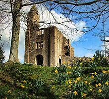 Springtime at (Old) Sherborne Castle by Amanda White