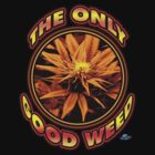 The Only Good Weed by woodywhip