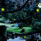 Untitled Fireflies 1 by Caitlin Doolittle