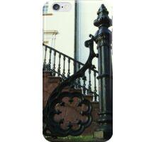Wrought Black Iron iPhone Case/Skin
