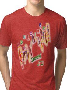 Dulcimers are in Tune Tri-blend T-Shirt