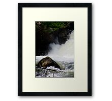 Gentle and Strong Framed Print