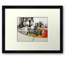 #42 Framed Print