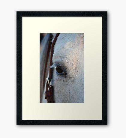 Through the Eye of a Horse Framed Print