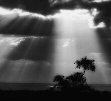 """Cascade of Light"" by debsphotos"