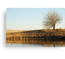 Lone Tree by Pond in Autumn Canvas Print