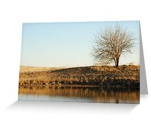Lone Tree by Pond in Autumn Greeting Card