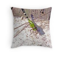 The Welcomed Guest Mossquito Hawk Throw Pillow