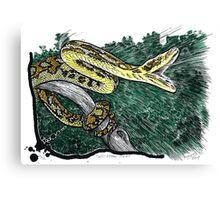 Striking Carpet Python Canvas Print