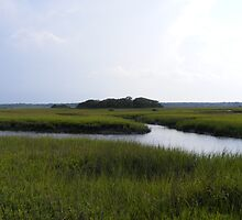 Matanzas River tidal marsh , St. Augustine , Florida by jim1911