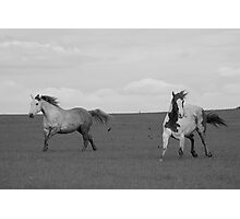Paint Horse and Stormy Photographic Print