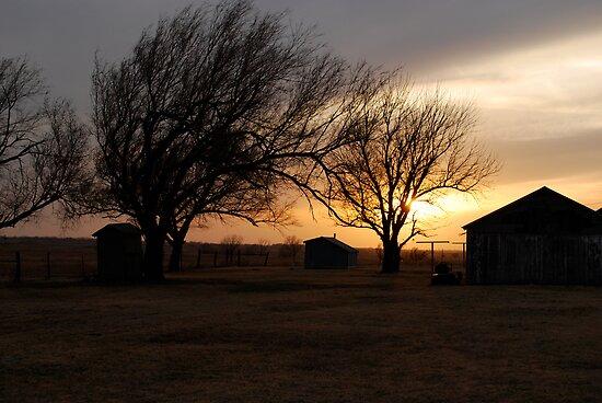 Kansas Sunset by Suz Garten