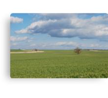 Big Sky and Kansas Wheat Canvas Print