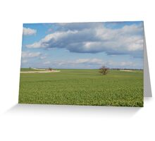 Big Sky and Kansas Wheat Greeting Card