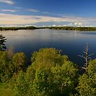 """Lake of the Woods "" by fortner"