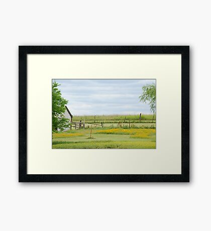 Kansas Country Solitude Framed Print