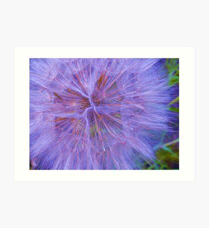 blue puff Art Print