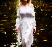 The Swan Maiden by Geoff Coleman - Conceptuals