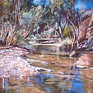Naranna Springs - Flinders Ranges by Lynda Robinson