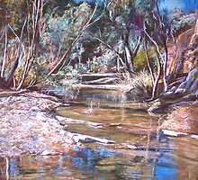 Naranna Springs - Flinders Ranges by Lynda Robinson