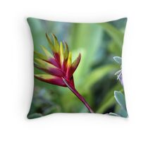 Bromiliad Flower Throw Pillow