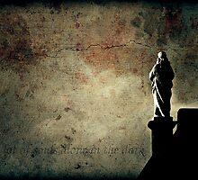 Alone in the dark by Igor Giamoniano