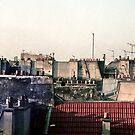 Les toits de Paris (Paris rooftops) by Alexander Meysztowicz-Howen