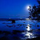 Blue moon by ozczecho