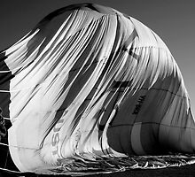 Balloon Curves by shanmclean