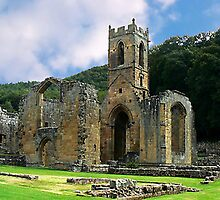Mount Grace Priory - North Yorkshire by Trevor Kersley
