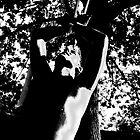 he oak by Clare McClelland