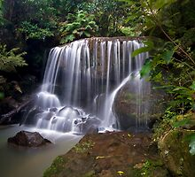 Leura Falls by Andrew McNeil