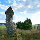 Standing Stones at Fjärås Bräcka by HELUA