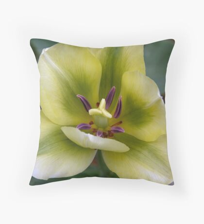 without a flaw Throw Pillow