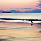 Pastel Dawn by PhotosByHealy