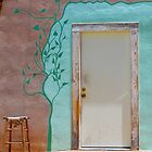 Bisbee Door by Emily Bagley