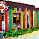 Bookstore Art North Carolina USA by Jonathan  Green