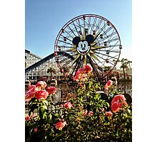 Fun Wheel Roses Photographic Print
