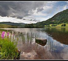 Rydal Water another look by Shaun Whiteman