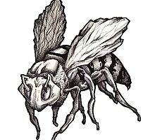 Bee 1 by Tancredi Trugenberger