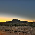 Big Bend State Park by Michael  Slevens