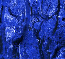 Abstracted Blue Trees, Moss, Branches and Sky by Ivana Redwine