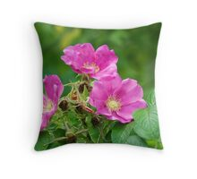 Wild Rose or Rugosa Rose Throw Pillow