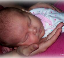 Safe in Mama's Hands by Lisa Taylor