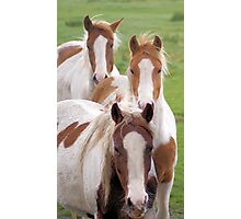 Three on a row Photographic Print