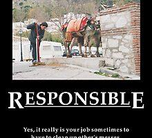 Life's Lesson 11 - Responsible by Allen Lucas