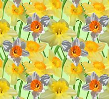 Daffy Daffodil by Carol Vega