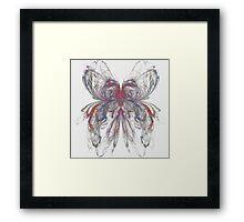 Butterfly Apophysis Framed Print
